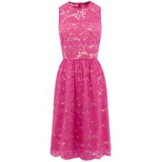 LONG LACE SKATER ($83) ❤ liked on Polyvore featuring dresses, long lace dress, long length dresses, lace dress, pink dress and pink lace dress