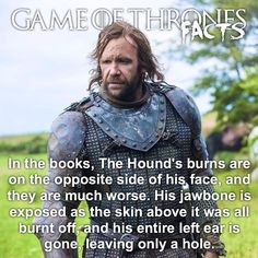Game Of Thrones Facts, Game Of Thrones Series, Game Of Thrones Quotes, Game Of Thrones Funny, Game Of Thrones Wallpaper, Rory Mccann, Game Of Trones, Got Memes, View Photos