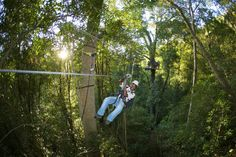 The Tsitsikamma canopy tour is a perfect blend of action and beauty. #honeymoon #gardenroute