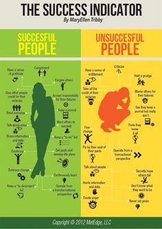The Success Indicator Infograph. Interesting