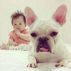 シーーー 眠そうだから、静かにね #frenchbulldog #frenchie #dog #daughter #babygirl #フレンチブルドッグ #女の子