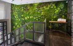 Resultado de imagen de jardin vertical