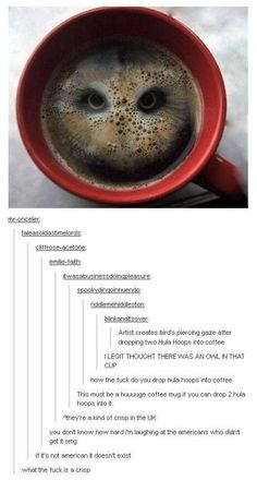 Oh bless the Americans who genuinely believed that some British man had had enough time to make a ginormous cup of tea and then proceed to drop two hula hoops in them to produce an image pf an owl.>>>> I AM ON OF THOSE AMERICANS THANKS YOU Funny Cute, Really Funny, Hilarious, Tumblr Stuff, Funny Tumblr Posts, Stupid Funny Memes, Funny Stuff, Random Stuff, Steven Universe