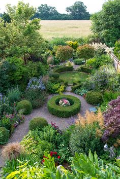 Valley Road Garden (23 m x 10 m) in July near London. Photo by Nicola Stocken.