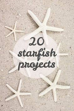 20 fun projects to make with (or inspired by) starfish