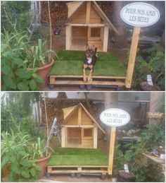 Using the old wooden pallets in the creation of the dog house has always stand out to be first choice in most of the houses. You can brilliant set the designing of your pet dog house with wooden pallet structural use into it that will look quite different and attractive.