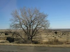 Great Plains of Eastern Colorado