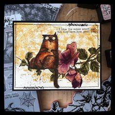 Crazy Bird, Crazy Dog, Crazy Cats, Tim Holtz Stamps, Ranger Ink, Cat Cards, Cat Boarding, Halloween Cards, Hello Everyone