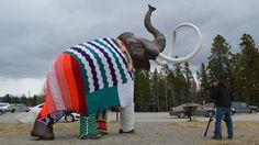 Yarn sculptures