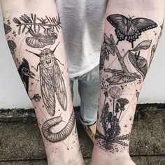 WEBSTA @ freeorgy - Memory fragments - second arm featuring cicada, millipede, tufted titmouse skeleton, mushrooms, click beetle, honey suckle, and Queen Anne's lace. Thanks Dylan! (First tattoo!) Swipe for wraparound! ✨✨