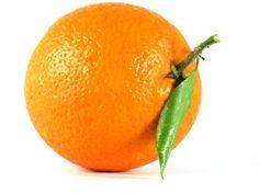 Orangen | eatsmarter.de