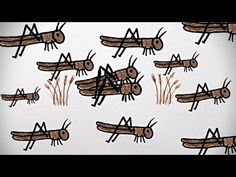 The Great North American Locust Plague - YouTube