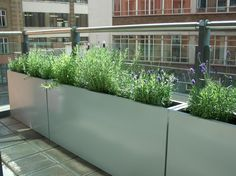 Galvanised steel planters on roof terrace -- Article ideas / Terrace Ideas For Articles on Best of Modern Design - So many good things!