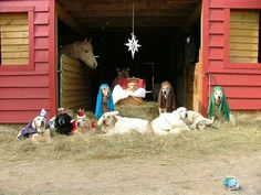 Best Nativity Scene Ever!