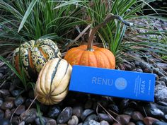"""Renu 28 will help with pain relief, wrinkles, acne, warts, dry skin, rashes, cold sores, canker sores, sun damage, scars, moles, skin tags, tension, muscle aches, sore muscles, varicose veins, bruises, age spots, """"strange"""" spots, sunburn, cuts, wounds, insect bites, burns and so much more! All for only $35! laurabubna.MyAseaLive.com"""