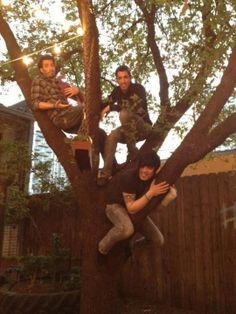 Climbing trees in Austin, TX. @MrSilverScott @Drew Scott