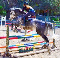 equitationqueen:Hannah Bruni and quanta