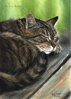 Tabby cat me time limited edition print of painting anne marsh art