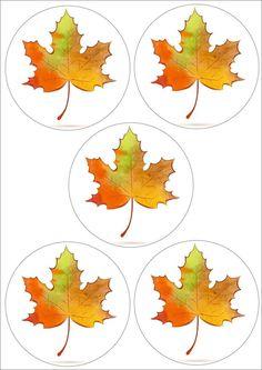 Vegetable Cartoon, Autumn Activities, Special Education, Rooster, Kindergarten, Classroom, Printables, Pictures, Autumn