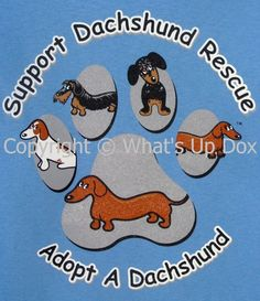 Support Dachshund Rescue T-Shirts http://www.shop.whatsupdoxdachshundshoppe.com/Support-Dachshund-Rescue-T-Shirt-103.htm