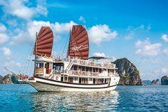 Swan Cruise Halong, Swan halong, Swan cruise halong bay