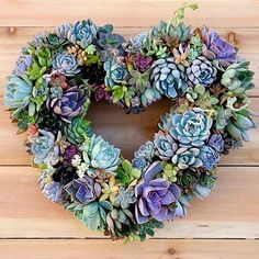 The perfect spring wreath  #Succulentwreath #need   Made by @gardenanswer