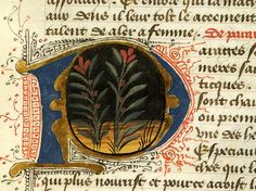 Régime du corps, MS M.0165 fol. 96r - Images from Medieval and Renaissance Manuscripts - The Morgan Library & Museum