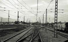 La niña planta. Fotografía vías del tren. Andalucía.