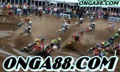 무료머니 ♥♥♥ONGA88.COM♥♥♥ 무료머니: 무료체험머니 ♥♥♥ONGA88.COM♥♥♥ 무료체험머니 Motocross, Sumo, Wrestling, Vehicles, Sports, Pictures, Lucha Libre, Hs Sports, Dirt Biking
