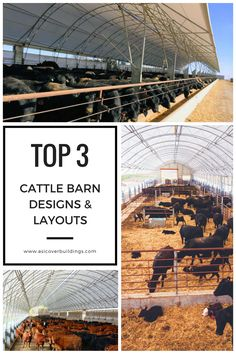 When it comes to building a cattle barn, it's important to provide a healthy environment for your herd to bring optimum cattle comfort which ultimately produces the most profits. Accu-Steel has 3 professionally designed building layouts for cattle housing, cattle feeding facilities, cow/calf operations, and other industry needs. Check out our latest blog to learn more!