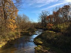 You just can't tire of the beauty of #IowaStateParks in the fall.: Ryan Digney, Wildcat Den  #Iowa #Travel #Fall