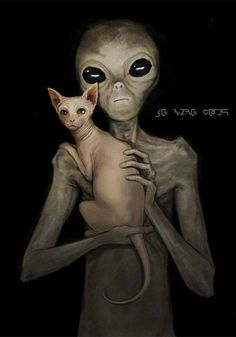 Disclose.tv - 27 Alien Species and Counting… Okay for some reason this video is not embedding properly. Not sure why. So here is the direct link to watch the video. Click here to watch the...