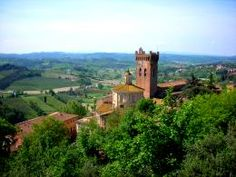 Truffle hunting in Tuscany with sampling of truffle specialties