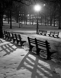 Boston Common in the winter