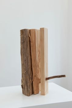 Artists | Maarten Vanden Eynde  - Genetologic Research nr 32 - 2010 wood