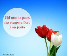 Proverbio turco - fiori
