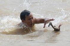 Filons vite! Sur le fleuve Cisadane à Tangerang, en Indonésie, un canard fait tout ce qu'il peut pour échapper à un homme participant à la traditionnelle fête des bateaux-dragons.