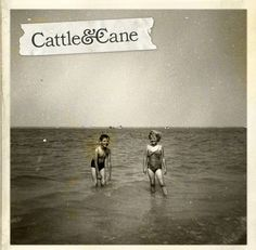 Cattle and Cane