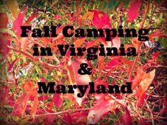 Fall Camping in Maryland and Virginia. #family Berry's Children Dental | #Mitchellville #Bowie | #MD | http://www.berrychildrendental.com/