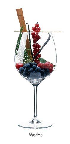 Guía de vinos para principiantes