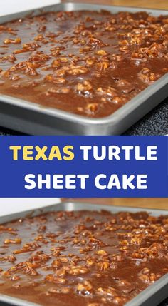TEXAS TURTLE SHEET CAKE Most of us already know and love Texas Sheet Cake (thank you to our Southern friends! But when you add pecans, more chocolate, and a caramel drizzle magical things happen! Just Desserts, Delicious Desserts, Dessert Recipes, Quick Dessert, Oreo Dessert, Fudge Recipes, Candy Recipes, Yummy Food, Food Cakes