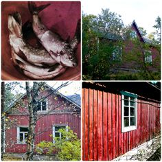 Fishing farm at the Finnish archipelago