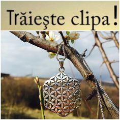 http://folconcept.ro/magazin/pandantiv-din-argint-floarea-vietii-hexagon/