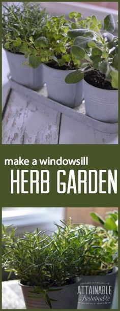A windowsill herb garden is a great way to bring a little green indoors. Grow your favorite herbs indoors, even during the winter months, and you'll have your favorite flavors ready for flavoring your meals.