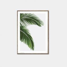 Palm Print 104,30 DKK