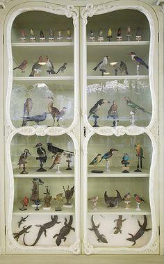 Heartbreakingly beautiful.     Cabinet of Curiosities of Bonnier de la Mosson by astropop, via Flickr