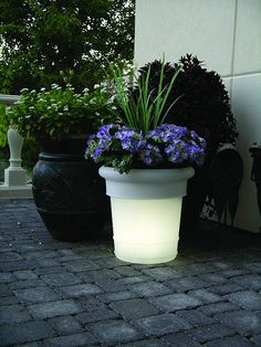 solar lighted planters