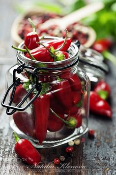 chili peppers with herbs and spices by klenova