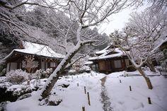 冬の寂光院の一面の雪景色