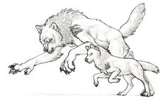 Normal wolf transforms to Dire wolf